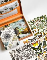 Pepin Letter Writing Set Natural History