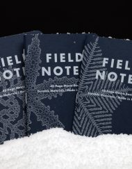 FIELD NOTES SNOWY EVENING
