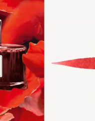 FABER CASTELL INDIA RED INK